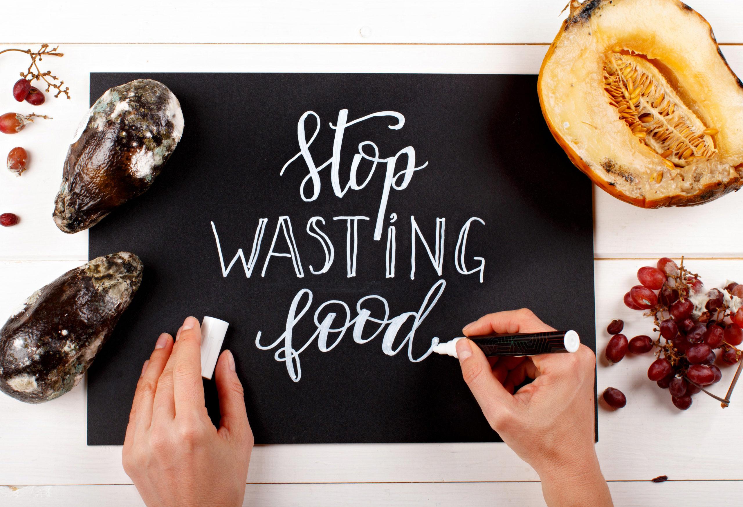 como evitar el desperdicio de comida